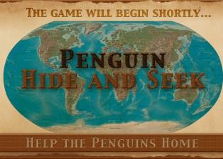 penguin-hide4